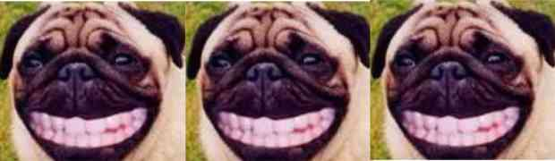 Sorriso Stampato